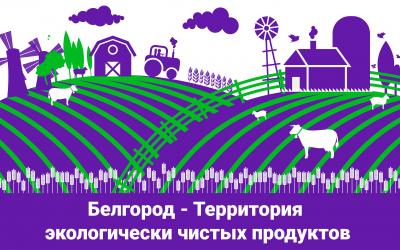 Николай Новичков: Белгородская область за двадцать лет сделала впечатляющий рывок