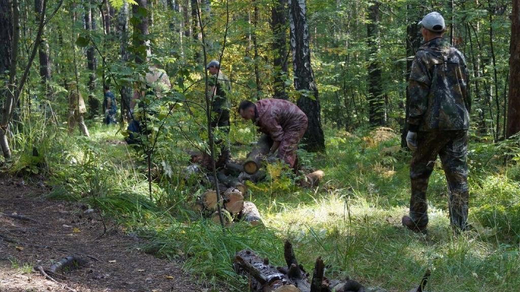 Нам больно смотреть, как медленно умирает наш лес 4