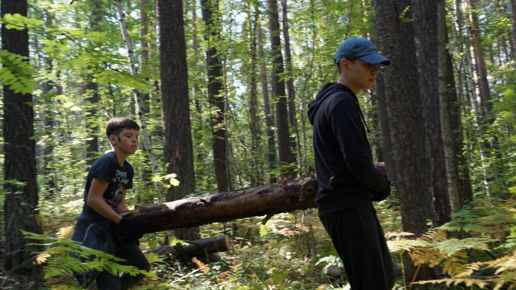 Нам больно смотреть, как медленно умирает наш лес 5