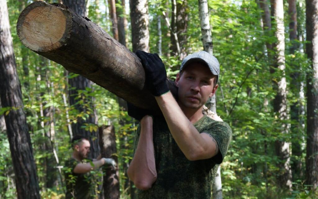Нам больно смотреть, как медленно умирает наш лес 2