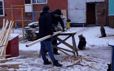 «Омские хвостики» теперь в новых жилищах