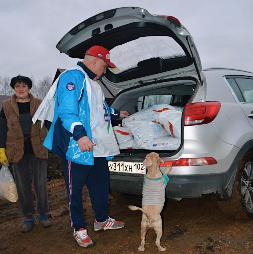 За помощь бездомным животным 1