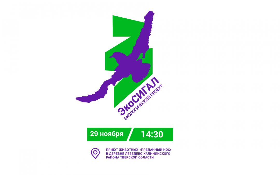 «ЭкоСигал» в Тверской области зовет всех 29 ноября помочь приюту «Преданный нос»