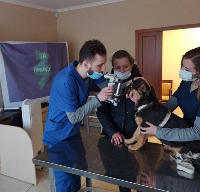 ЗА ПРАВДУ в Саратове организовало благотворительную акцию «Лучшая защита питомца – консультация с врачом»