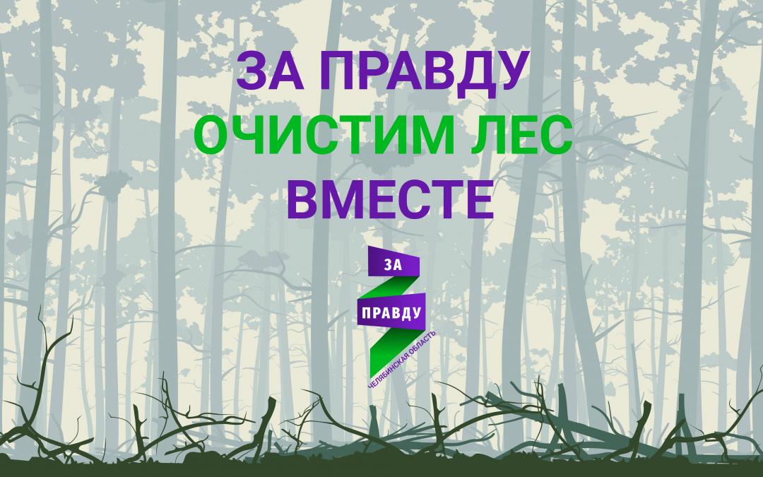 ЗА ПРАВДУ в Челябинской области будет очищать лес