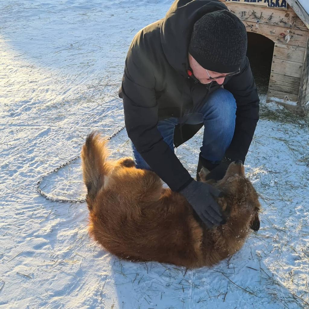 ЗА ПРАВДУ в ЯНАО помогли фонду бездомных животных 1