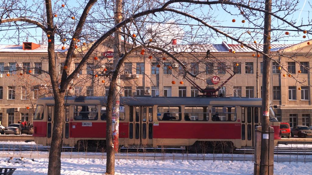 Сбор подписей за присвоение скверу имени Бориса Рыжего 1
