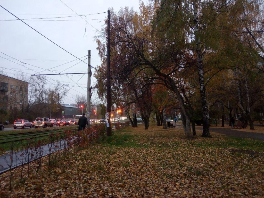 Сбор подписей за присвоение скверу имени Бориса Рыжего 2
