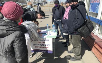 Количество несогласных с дистантом в Алтайском крае растет