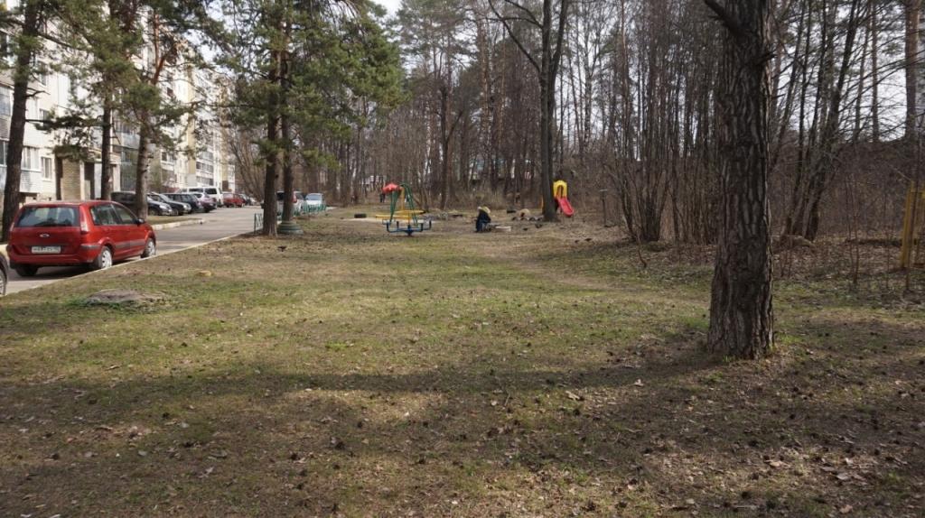 Движение Захара Прилепина в рамках проекта ЭкоСигал продолжает эстафету субботников по всей России 12