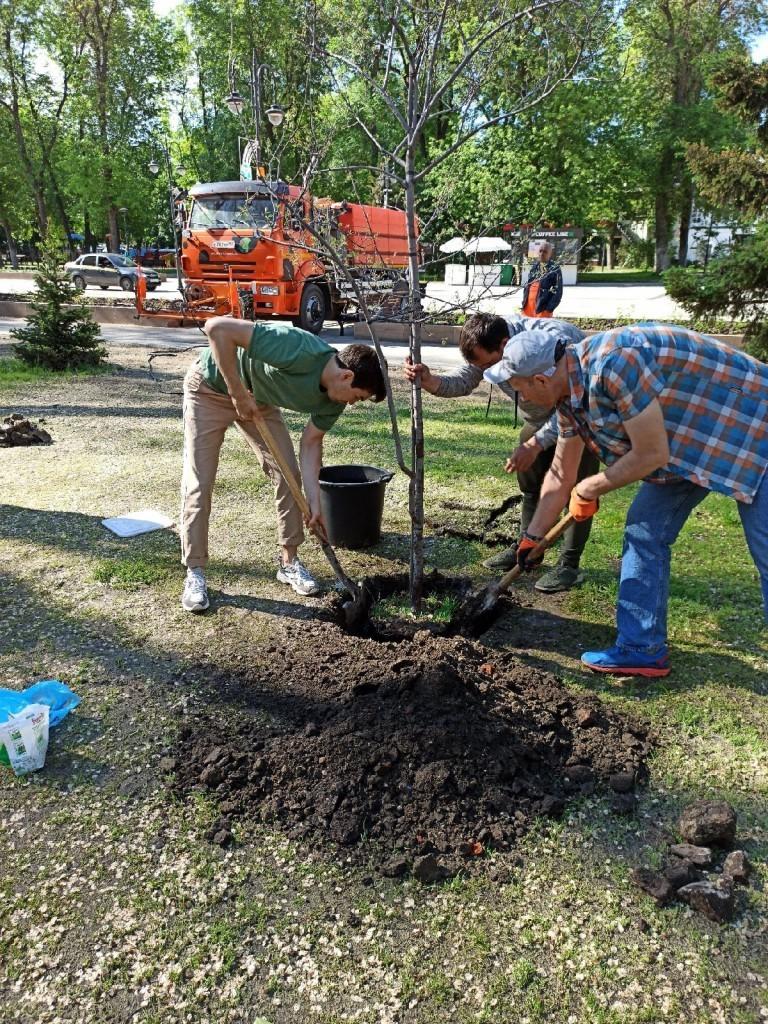 Артем Чеботарёв принял участие в акции по посадке деревьев в Саратове 2