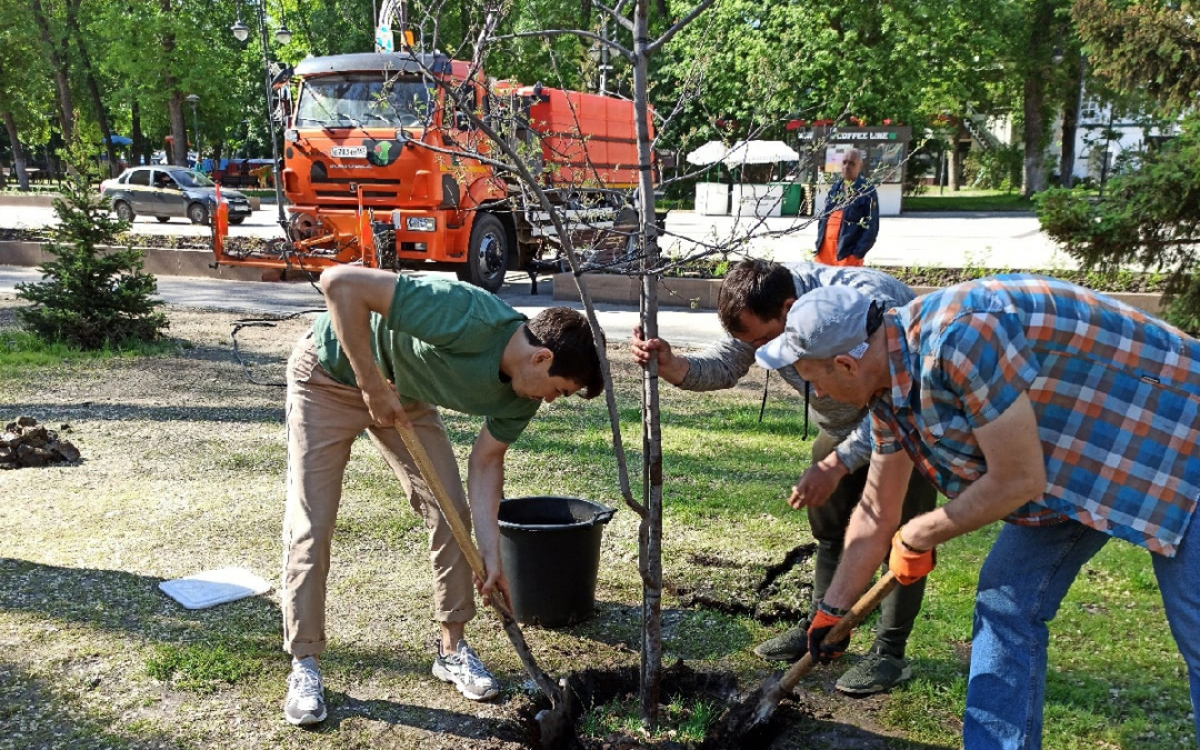 Артем Чеботарёв принял участие в акции по посадке деревьев в Саратове