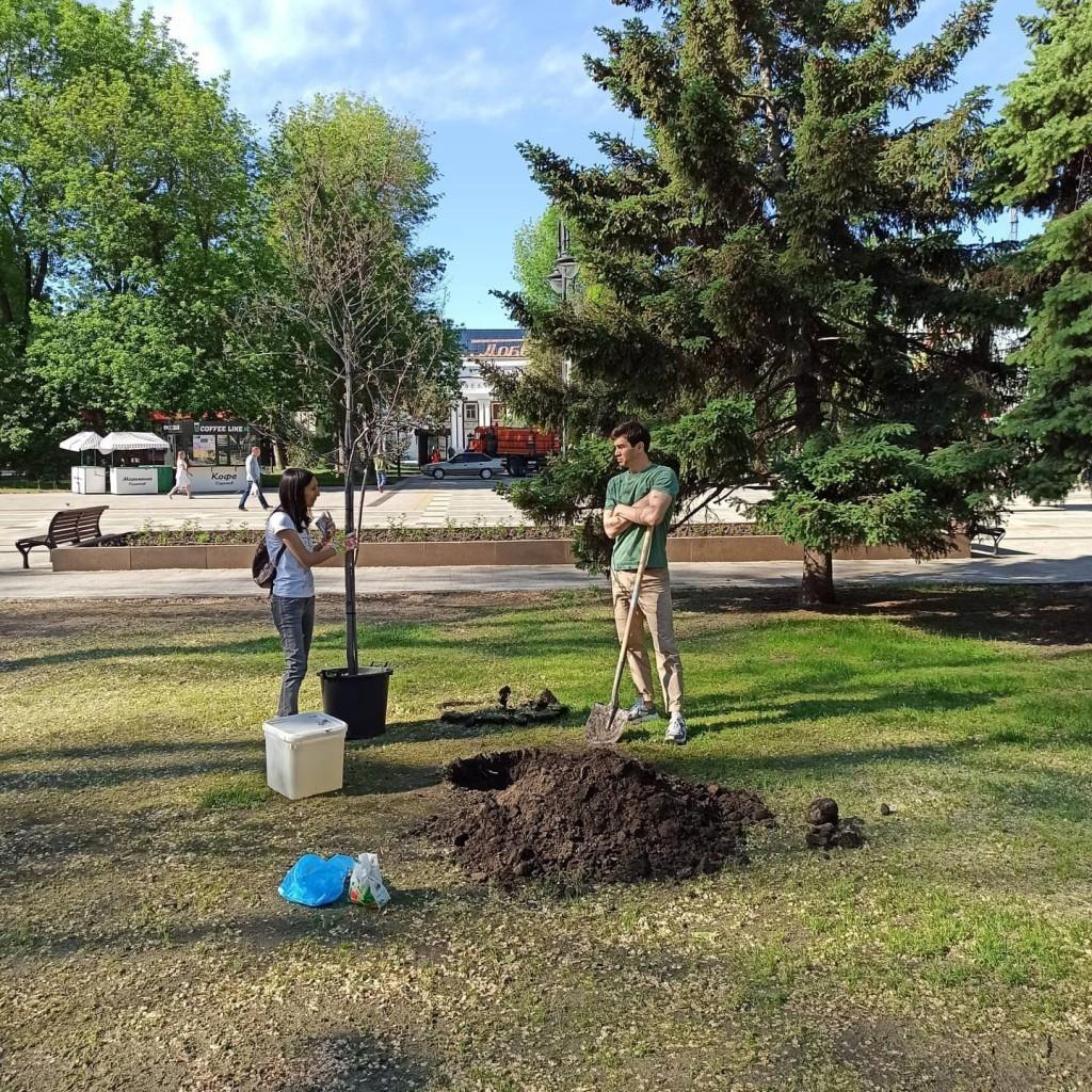 Артем Чеботарёв принял участие в акции по посадке деревьев в Саратове 3