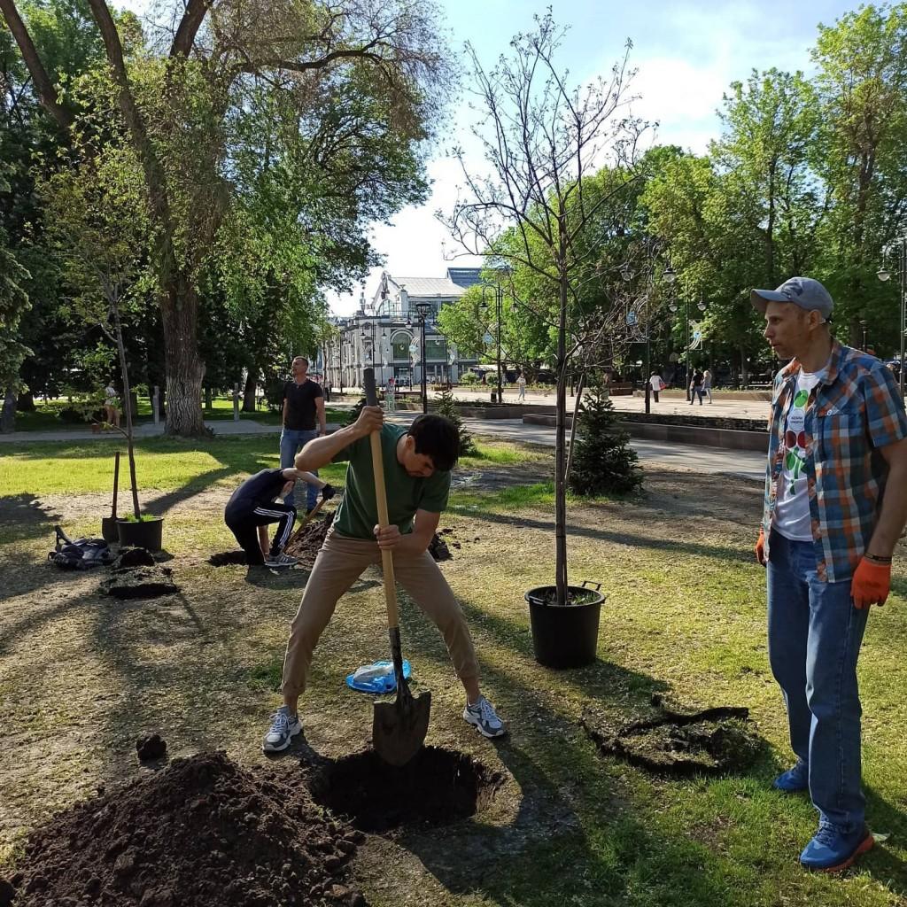 Артем Чеботарёв принял участие в акции по посадке деревьев в Саратове 1