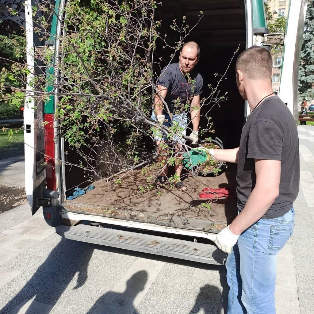 Артем Чеботарёв принял участие в акции по посадке деревьев в Саратове 4