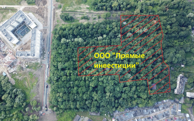 Борьба прилепинцев за Суздальский парк подходит к успешному завершению