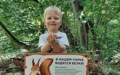 В Суздальском парке напомнили о белках