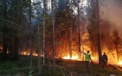 Гвардия будет бороться против пожаров в Карелии