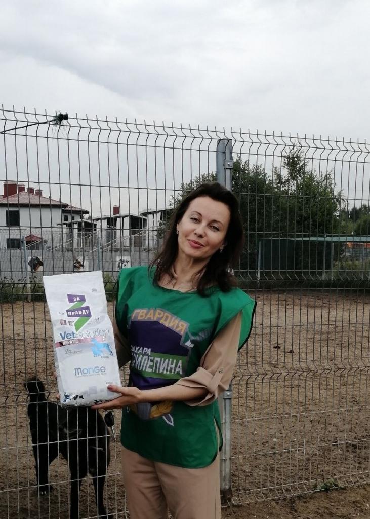 Химкинские активисты посетили приют для собак 1