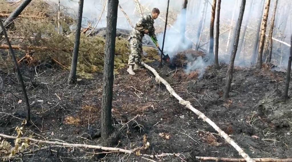 Гвардейцы помогли ликвидировать пожары в Карелии 1